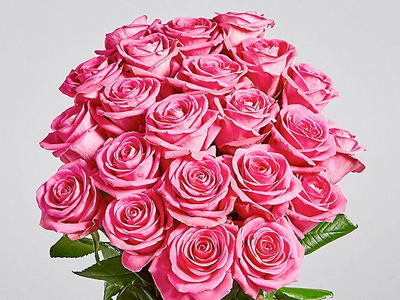 The roses shop flowers plants ms a bouquet of pink roses mightylinksfo Images