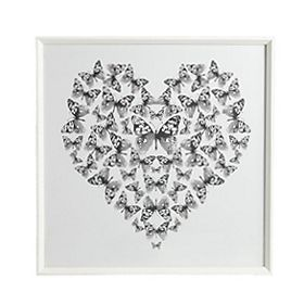 A framed butterfly print