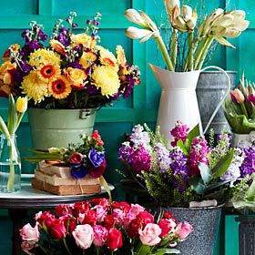 Vases of colourful flowers
