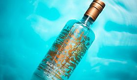 Find out about Silent Pool gin
