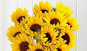 Shop sunflower bouquet