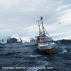 Fishing boat at sea in Norway