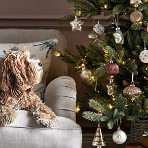 Dog on a sofa next to a Christmas tree