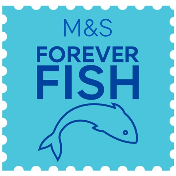 Forever Fish