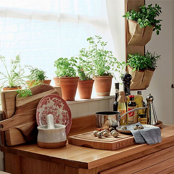 Indoor plants and herbs