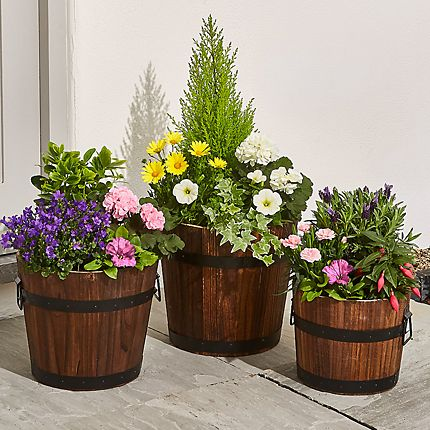 Duck-shaped plant pot filled with purple flowers