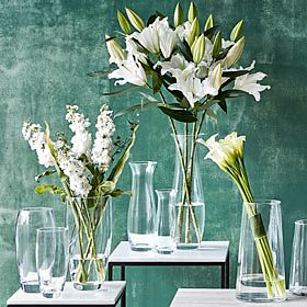 Glass vases on shelves