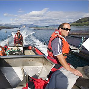 Scottish sea farm employees at work on the loch