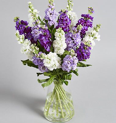 £5 off selected seasonal bouquets