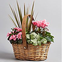 Basket of flowers and foliage