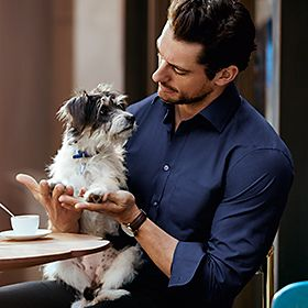 David Gandy wearing a blue shirt holding a dog