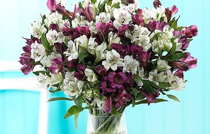 3a1fc61190b3 Purple and white alstroemeria bouquet