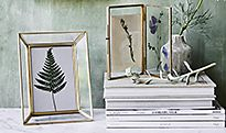 Foliage displayed in photo frames