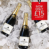 Bottles of Louis Vertay champagne on ice