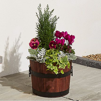 Outdoor plant pot filled with flowers and foliage