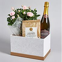 Hamper of plants, chocolates and prosecco